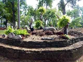 Images de saint denis - Jardin potager bio saint denis ...